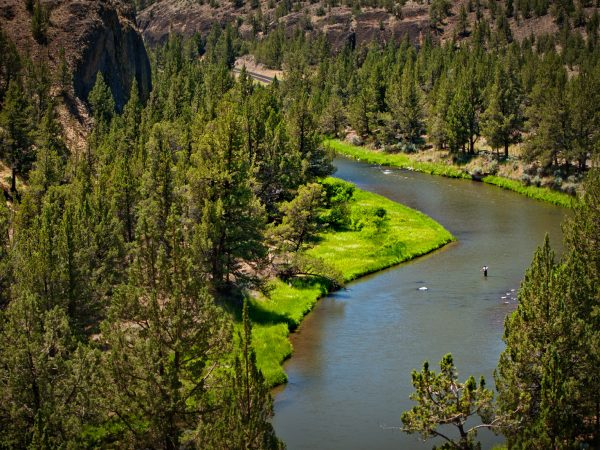Crooked River Half & Full day Fly Fishing Trips