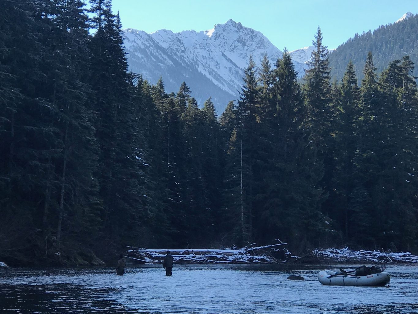 View from the Upper Copper River, BC